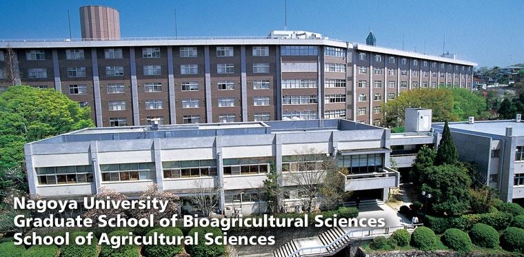Thông tin đại học Nagoya 7