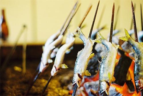 Thú câu và nướng cá suối Ayu ở Nhật Bản