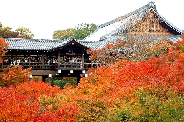 5 địa điểm ngắm mùa lá đỏ lý tưởng nhất tại Nhật Bản 9