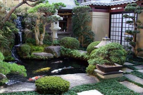 Một khoảng sân nhỏ trước hoặc sau nhà đều có thể thiết kế một ao cá Koi.