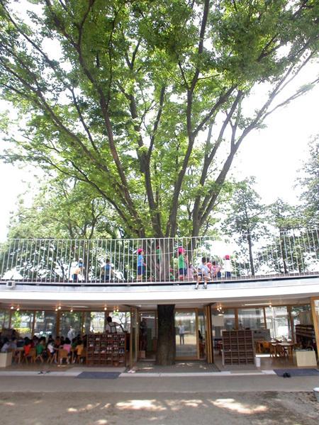 """Trường mẫu giáo """"cây mọc trên mái nhà"""""""