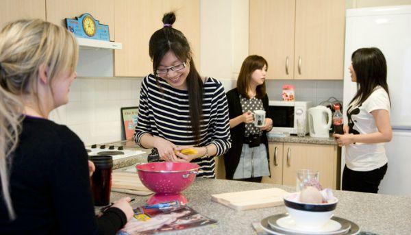 Chia sẻ cách hòa nhập với cuộc sống du học Nhật Bản cho các bạn du học sinh