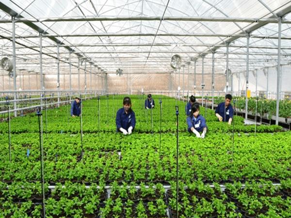 Bạn đã biết về học bổng thạc sỹ ngành nông nghiệp tại Nhật chưa?