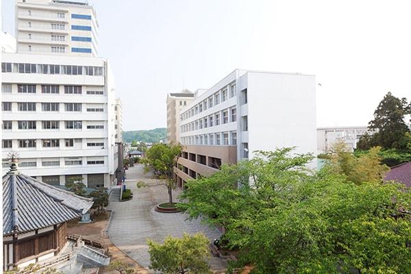 Sức hút của trường đại học Ehime đối với du học sinh