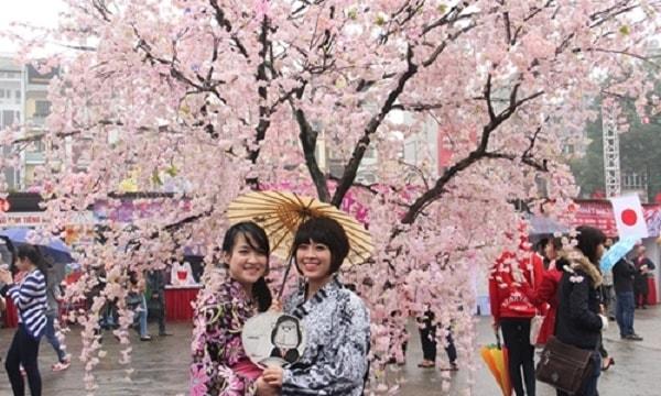 Lễ hội búp bê Nhật Bản còn được gọi là lễ hội Hoa anh đào