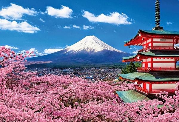 Tìm hiểu về trường đại học Kinki - Ngôi trường hàng đầu Nhật Bản