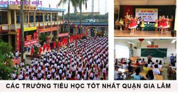 Top 10 trường tiểu học tốt nhất huyện Gia Lâm 2