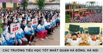 Top 10 trường tiểu học tốt nhất quận Hà Đông, Hà Nội 2