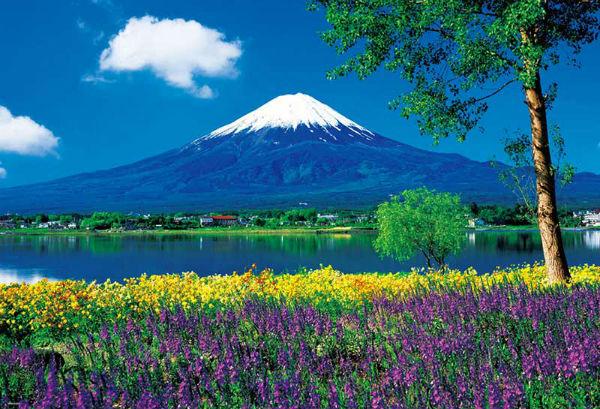 Núi Phú Sĩ vào mùa hè