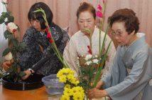 Những điều thú vị về nghệ thuật cắm hoa ikebana của người Nhật