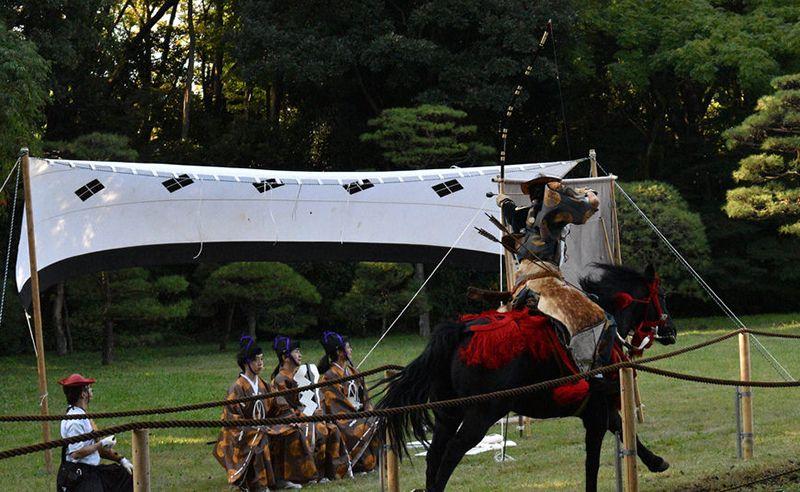 Giám khảo chấm điểm trong lễ hội