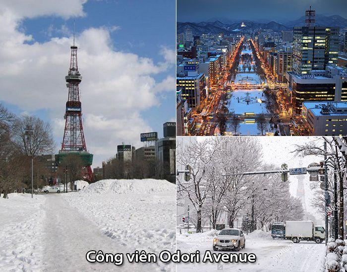 Công viênOdori Avenue những ngày mùa đông