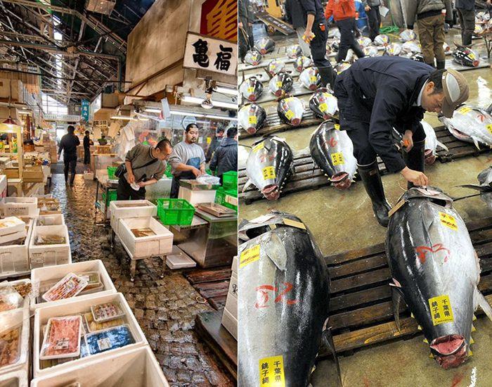 Chợ cá Tsukiji nổi tiếng ở Tokyo