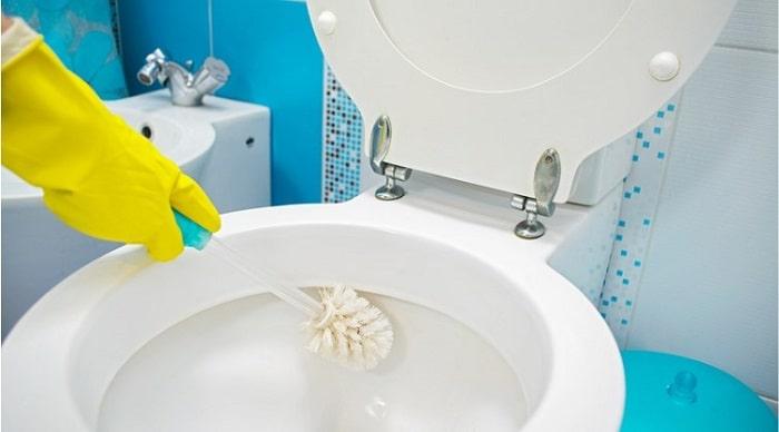 Thường xuyên cọ rửa bồn cầu để nó luôn sạch sẽ